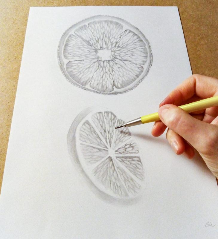 Orange slice drawing